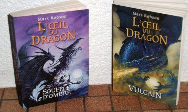 Sagas fantastique sur les dragons